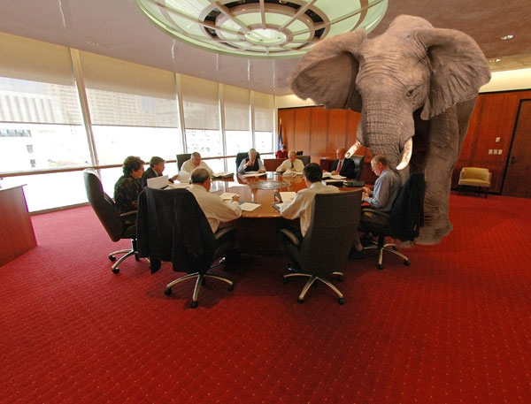 A business meeting with a real elephant in the room