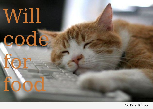 A funny picture sleeping on a keyboard, with the mention 'Will code for food'