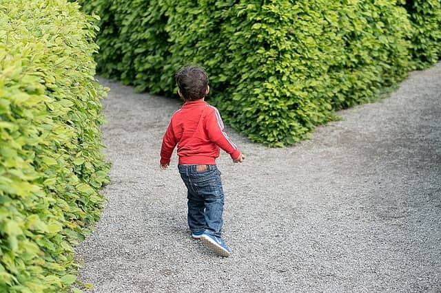 A child at a crossroad in a maze. In this complex world, figuring out which path might increase productivity is guesswork!