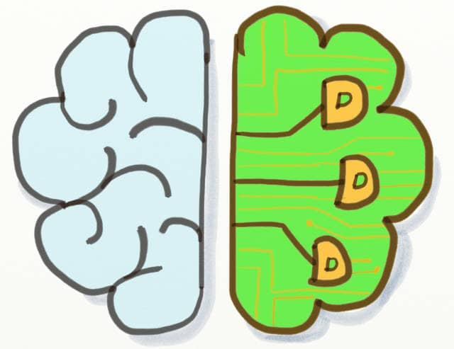 Drawing of a split brain, 1 side biologic the other electronic, with DDD appearing on it. DDD can contribute a lot to Machine learning.